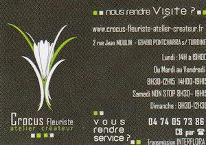 Crocus Floriste